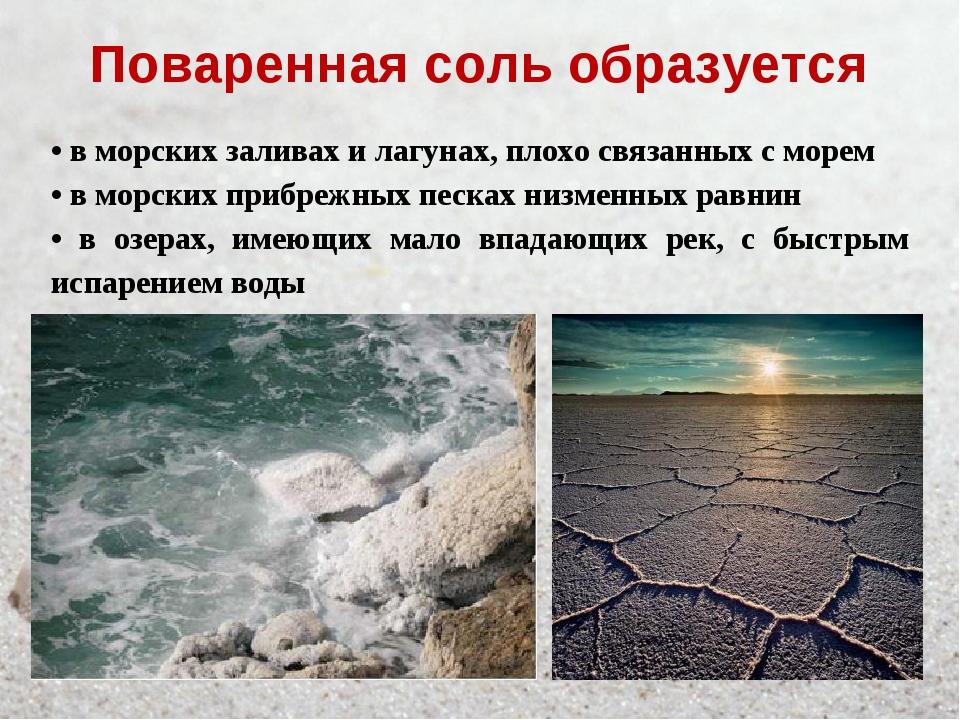 Поваренная соль образуется • в морских заливах и лагунах, плохо связанных с м...
