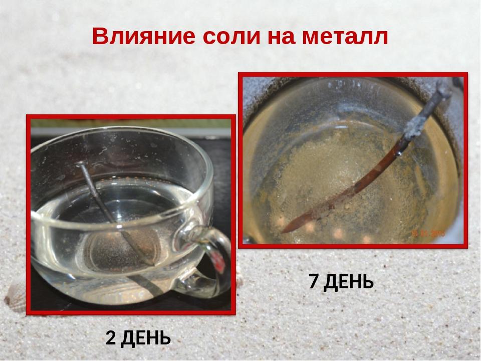 Влияние соли на металл 2 ДЕНЬ 7 ДЕНЬ