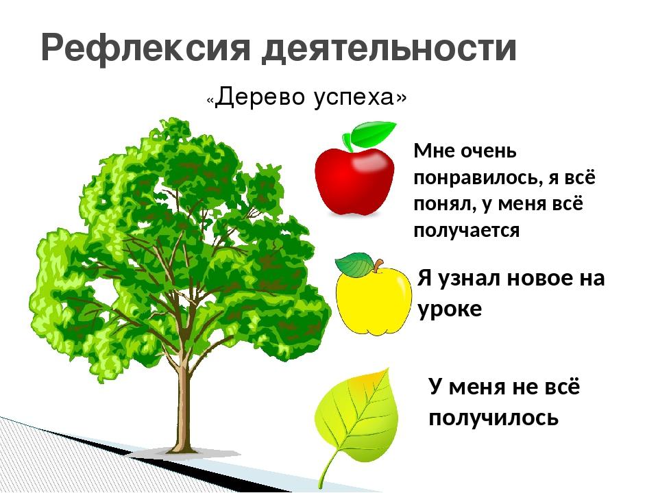 дерево успехов успеха на уроке картинки карьера