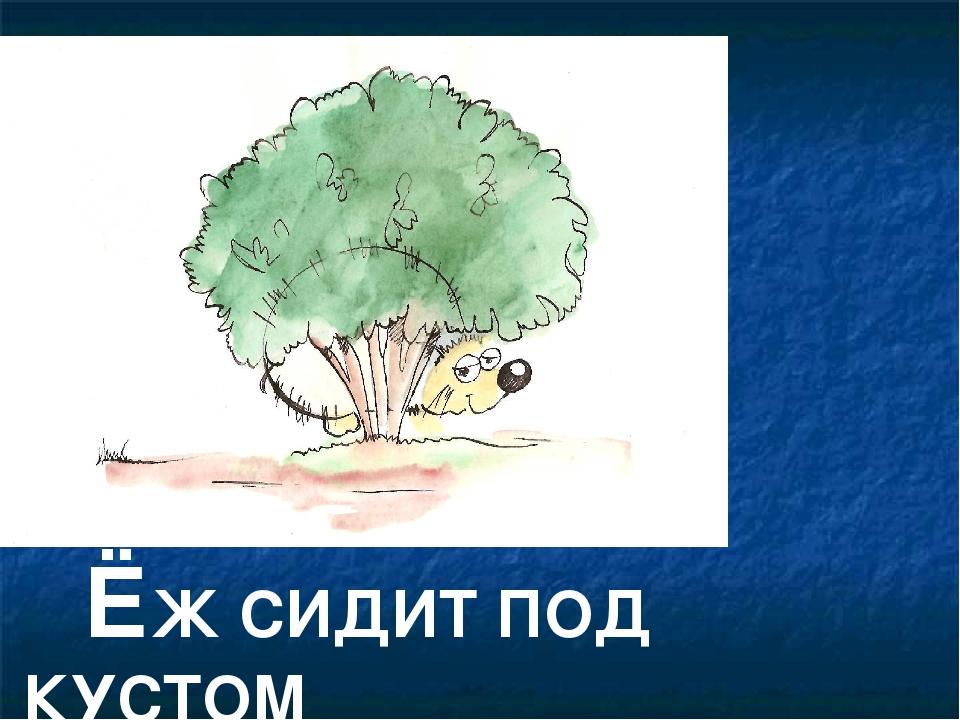 ЁЖ СИДИТ ПОД КУСТОМ
