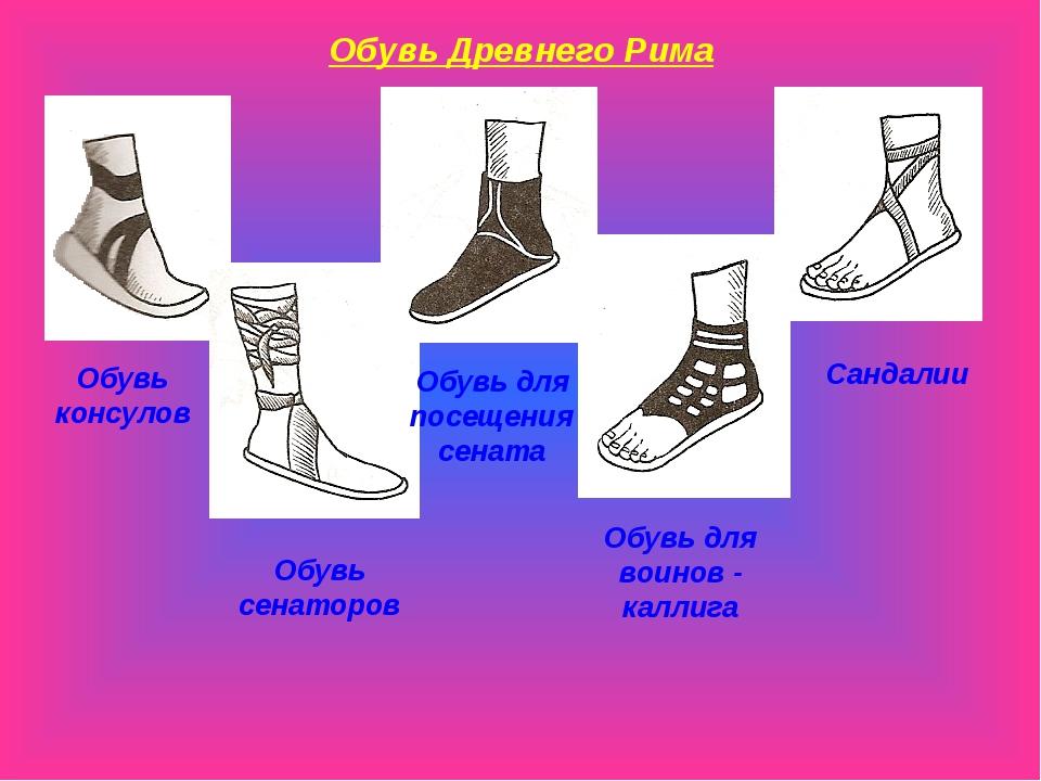 состав приват обувь древнего рима картинки проект
