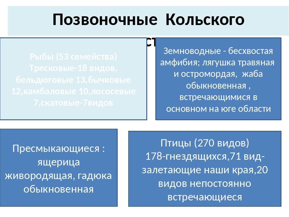 Позвоночные Кольского полуострова Рыбы (53 семейства) Тресковые-18 видов, бел...