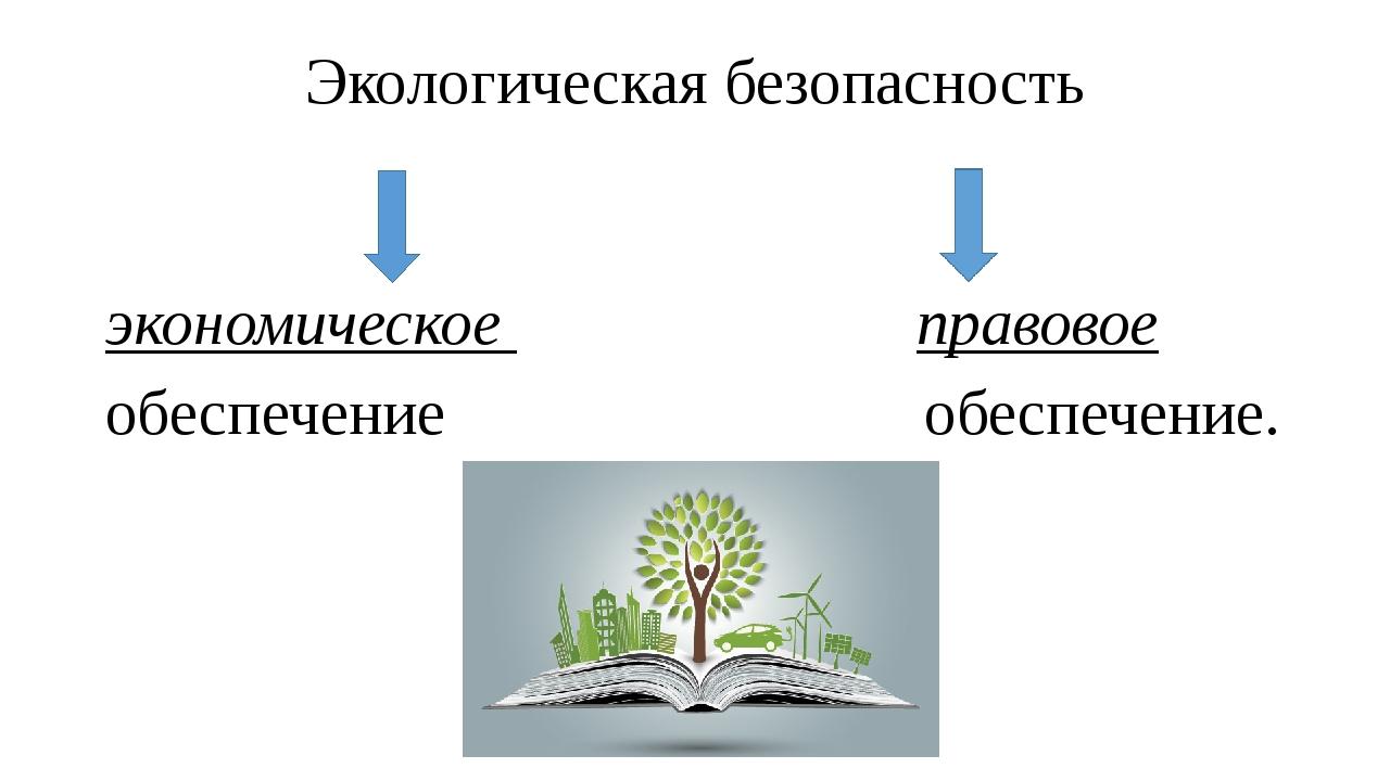 Экологическая безопасность экономическое правовое обеспечение обеспечение.