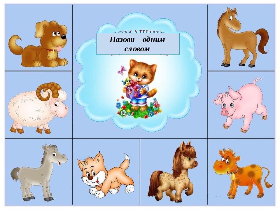 картинки животных для дидактических игр опасными