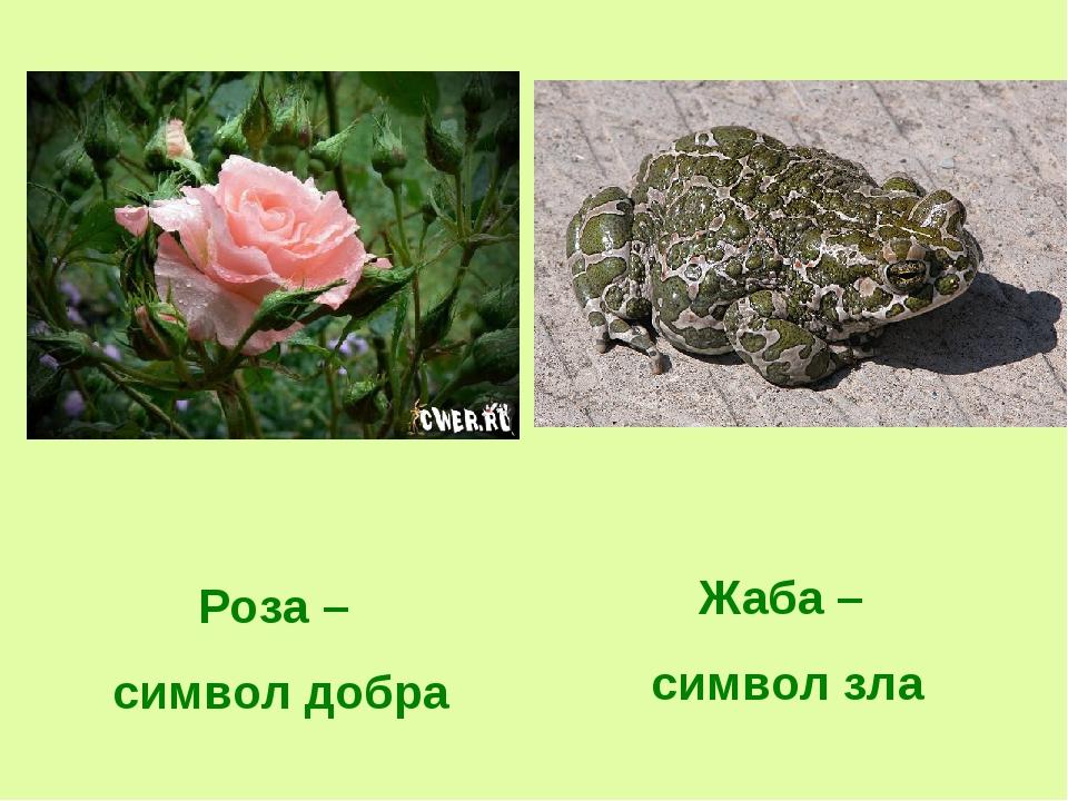 главная мысль сказки о жабе и розе с картинками тут