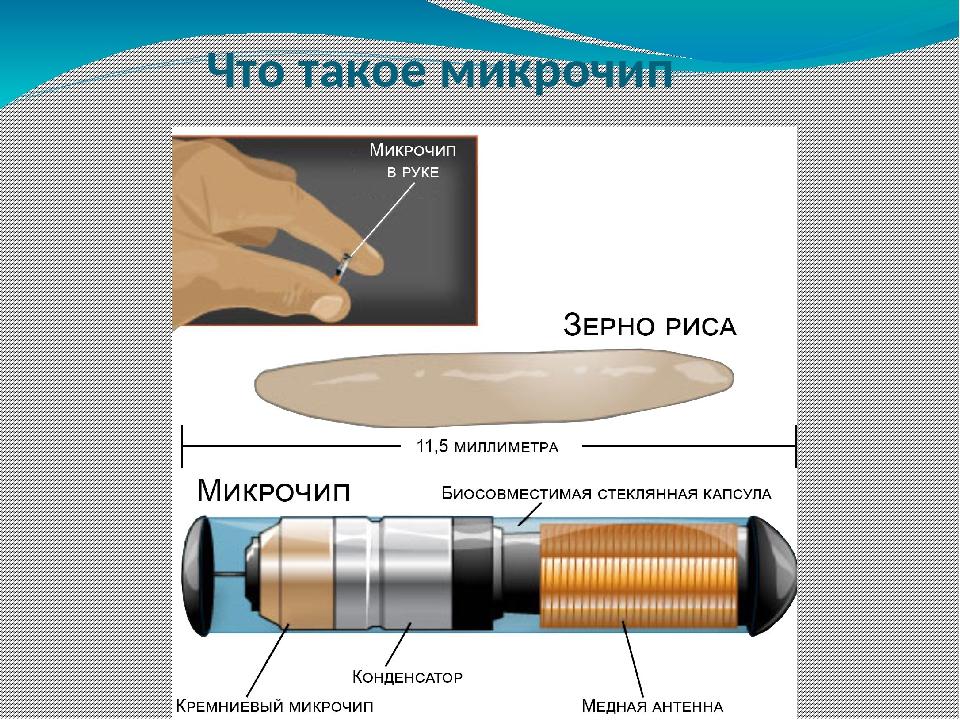 Что такое микрочип