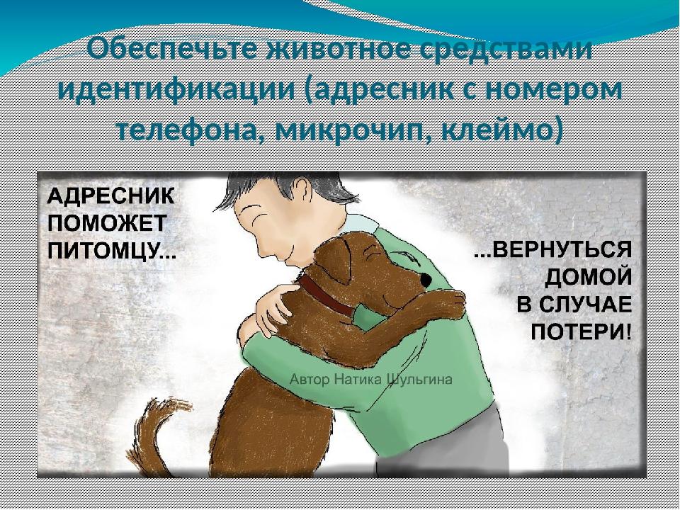 Обеспечьте животное средствами идентификации (адресник с номером телефона, ми...