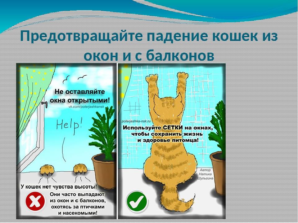 Предотвращайте падение кошек из окон и с балконов