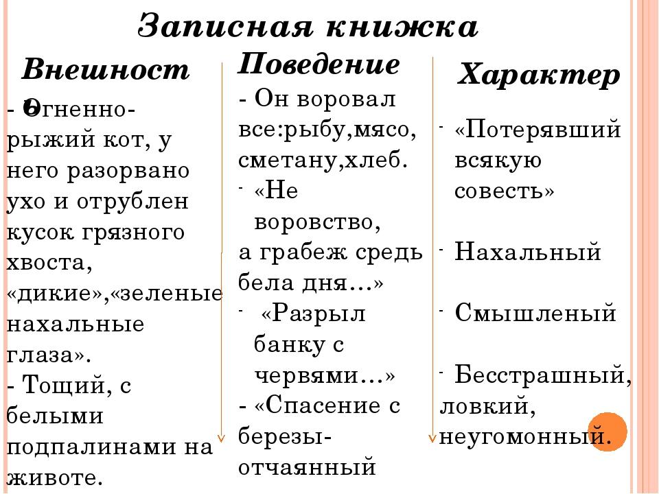 Записная книжка Внешность Поведение Характер - Огненно-рыжий кот, у него разо...