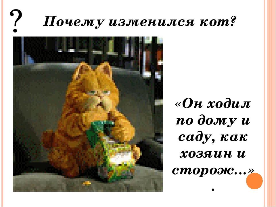 ? Почему изменился кот? «Он ходил по дому и саду, как хозяин и сторож…».