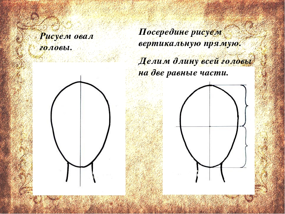 Рисуем овал головы. Посередине рисуем вертикальную прямую. Делим длину всей...